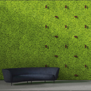 Twinkles for Green Walls